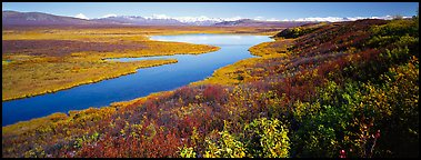 Tundra, lake, and mountains in autumn. Alaska, USA (Panoramic color)