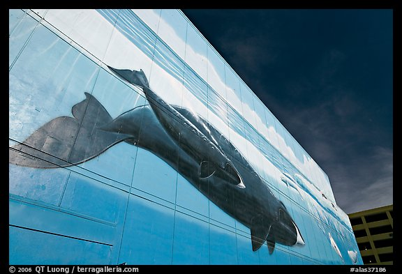 Outdoor wall mural with whale. Anchorage, Alaska, USA (color)