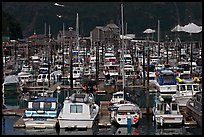 Small boat harbor. Whittier, Alaska, USA ( color)