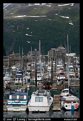 Yachts anchored in small boat harbor. Whittier, Alaska, USA (color)