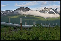 Trans-Alaska Pipeline and mountains. Alaska, USA (color)