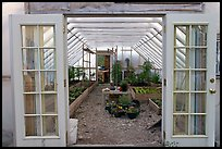 Greenhouse used for vegetable growing. McCarthy, Alaska, USA ( color)