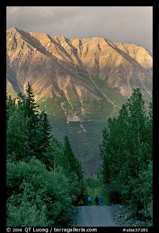 People strolling on unpaved path, with sunset light on mountains. McCarthy, Alaska, USA (color)