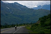 Road cycling, Glenn Highway. Alaska, USA ( color)
