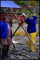 Inupiaq Eskimo women drying fish, Ambler. North Western Alaska, USA ( color)