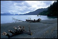 Beach and Resurection Bay at Lowell Point. Seward, Alaska, USA ( color)