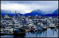 Small Boat Harbor on the Spit with Kenai Mountains in the backgound. Homer, Alaska, USA (color)