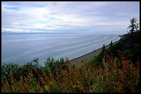 Cook Inlet. Ninilchik, Alaska, USA ( color)
