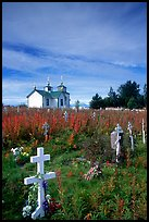 Russian orthodox cemetery and old Russian church. Ninilchik, Alaska, USA ( color)