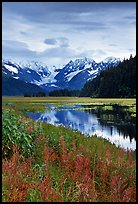 Autumn grasses and mountains reflected in a pond near Portage. Seward Highway, Kenai Peninsula, Alaska, USA