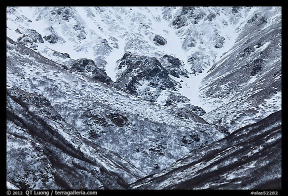 Snowy gullies. Alaska, USA (color)