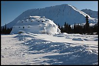 Winter landscape with igloo-shaped building. Alaska, USA ( color)