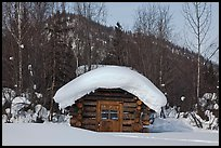 Snow-covered cabin. Wiseman, Alaska, USA ( color)