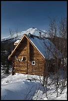 Log cabin in winter. Wiseman, Alaska, USA ( color)