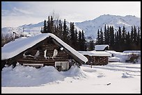 Heavily snow-covered cabins in winter. Wiseman, Alaska, USA ( color)