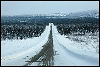 North Slope Haul Road in winter. Alaska, USA ( color)