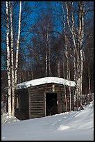 Historic cabin in winter, Chatanika. Alaska, USA ( color)