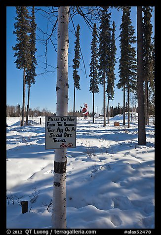 Surroundings of Santa Claus House in winter. North Pole, Alaska, USA (color)