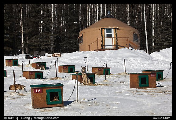 Doghouses and yurt tent. North Pole, Alaska, USA