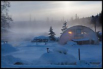 Greenhouse and steam. Chena Hot Springs, Alaska, USA ( color)