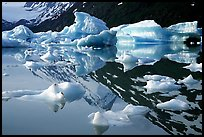 Icebergs and mountain reflections, Portage Lake. Alaska, USA ( color)