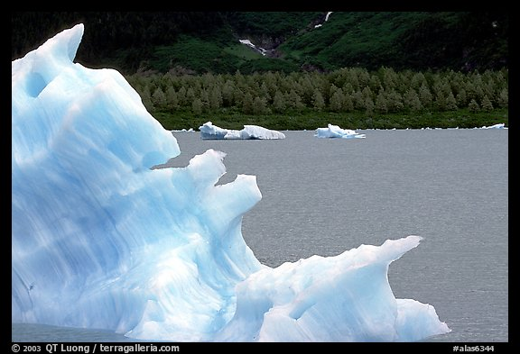 Iceberg framing Portage Lake. Alaska, USA