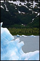Blue iceberg and Portage Lake. Alaska, USA (color)