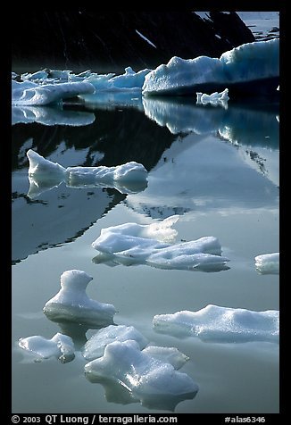 Floating ice and mountain reflections, Portage Lake. Alaska, USA (color)