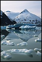 Iceberg-filled Portage Lake. Alaska, USA ( color)
