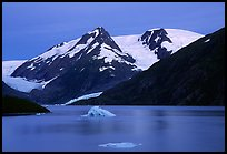 Icebergs in Portage Lake at dusk. Alaska, USA (color)