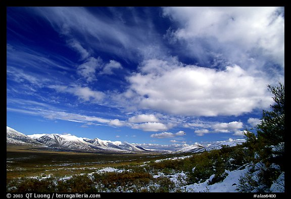Valley and large white clouds. Alaska, USA (color)