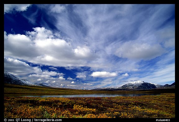 Tundra in fall color, lake, and sky dominated by large clouds. Alaska, USA (color)