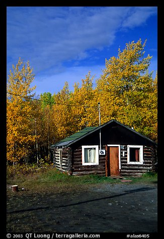 Picture Photo Log Cabin And Trees In Fall Color Alaska Usa