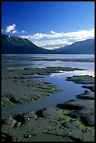 Mud flats, Turnagain Arm. Alaska, USA ( color)