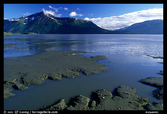 Mud flats, Turnagain Arm. Alaska, USA (color)