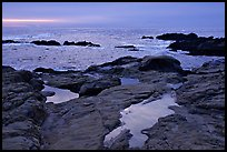 Tidepools, sunset, Weston Beach. Point Lobos State Preserve, California, USA ( color)