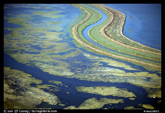 Aerial view of wetlands in the South Bay. Redwood City,  California, USA (color)