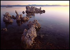 Tufa rock on south shore at sunrise. Mono Lake, California, USA (color)