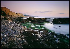 Mussel-covered rocks, seaweed and cliffs, sunset. California, USA ( color)