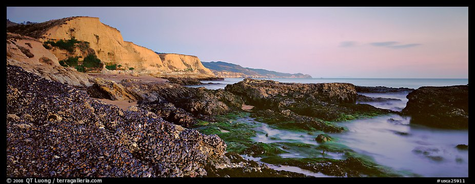 California seascape with mussels and cliffs. Point Reyes National Seashore, California, USA (color)