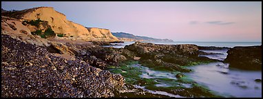 California seascape with mussels and cliffs. Point Reyes National Seashore, California, USA (Panoramic color)