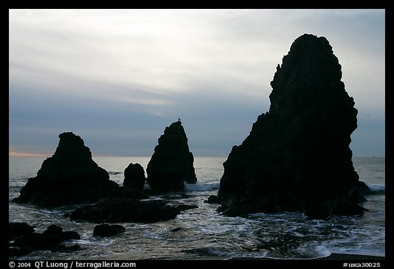 Seastacks, Rodeo Beach, afternoon. California, USA (color)