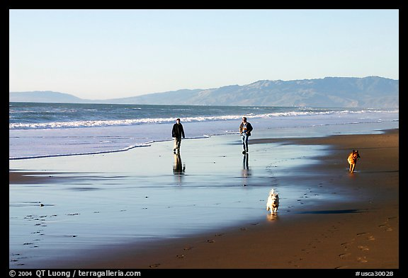People and dogs strolling on beach near Fort Funston,  late afternoon, San Francisco. San Francisco, California, USA (color)