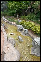 Stream, Japanese Friendship Garden. San Jose, California, USA (color)