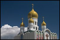 Russian Cathedral Holy Virgin. San Francisco, California, USA ( color)