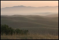Rolling Hills  seen from Laguna Seca, Fort Ord National Monument. California, USA (color)