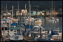 Boats and Fisherman's Wharf, afternoon, Monterey. Monterey, California, USA ( color)