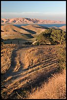 Golden hills and San Luis Reservoir. California, USA