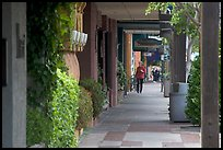Shopping area of Santa Cruz avenue, the main downtown street. Menlo Park,  California, USA