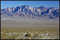 Providence Mountains. Mojave National Preserve, California, USA